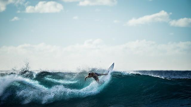 コンサルは変革の波をサーフィンする