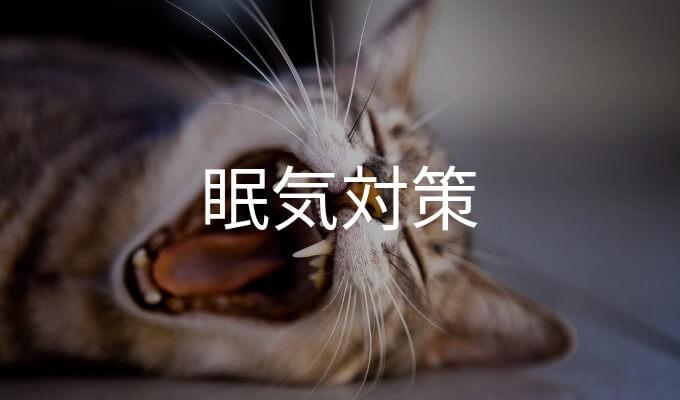 あくびをしている猫